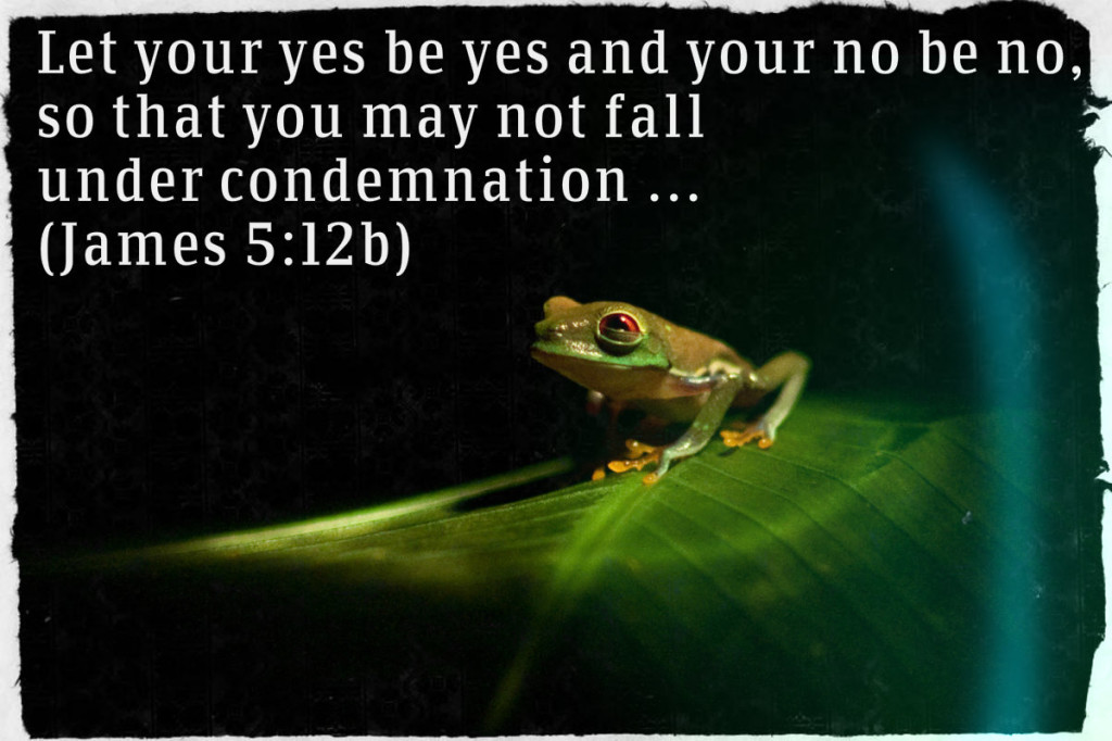Let your Yes be Yes and your No be No Frog